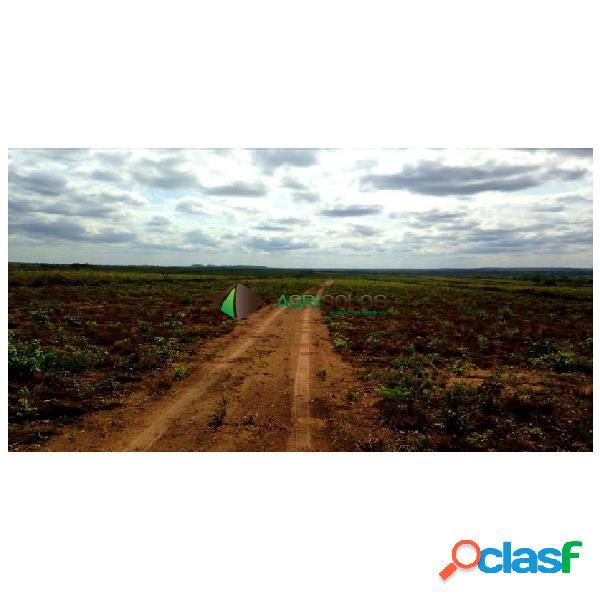 Fazenda 3.600ha p/ irrigação dupla aptidão