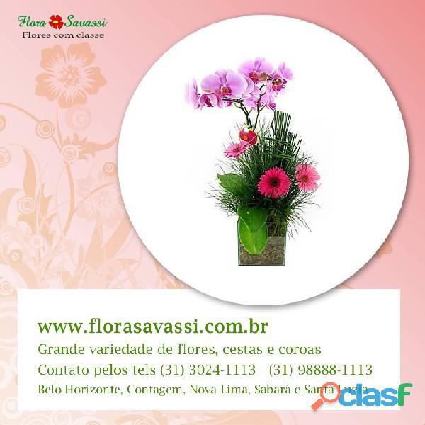 Floricultura flora savassi em belo horizonte entrega orquídeas, vaso orquídea, arranjo orquídea mg