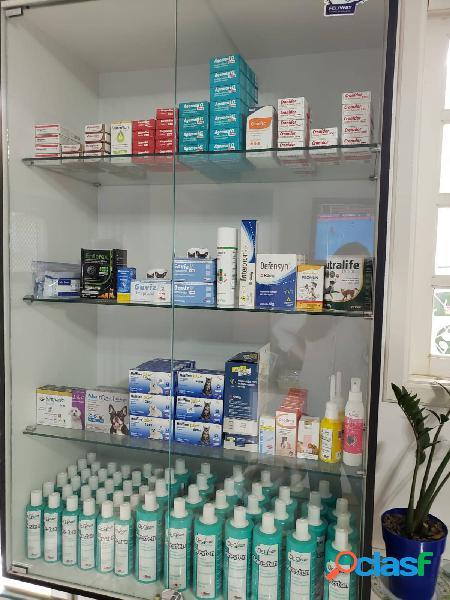 Clinica Veterinária e Pet Shop>Brooklin 1