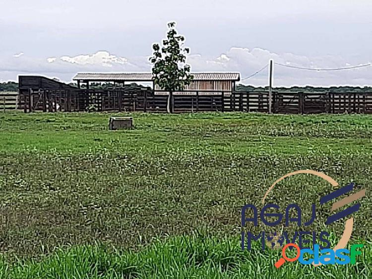 Fazenda em pium-to   528 alqueires   pecuária