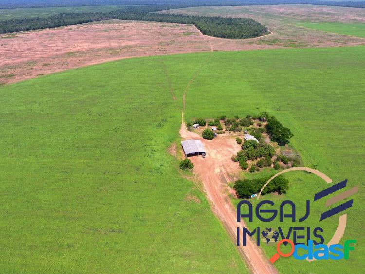 Fazenda em santa maria das barreiras-pa | 2.702 alq | lavoura