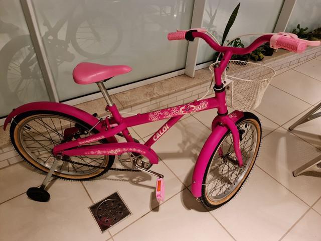 Bicicleta caloi feminina aro 20