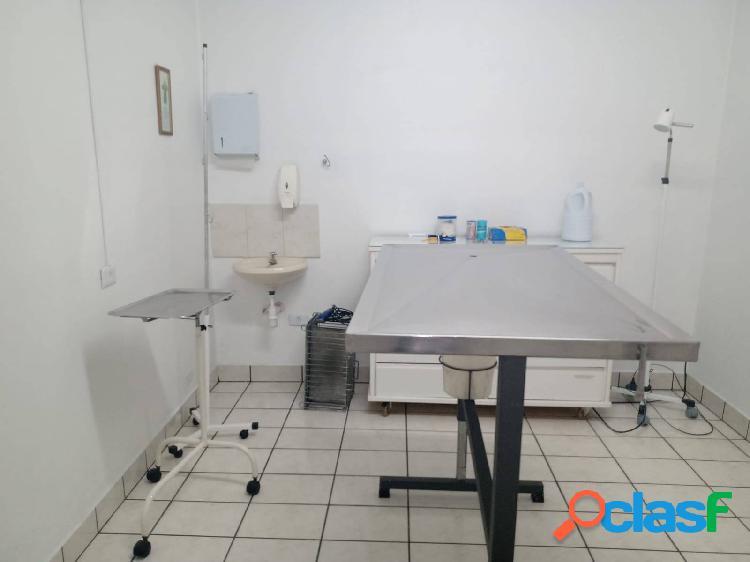 Clinica veterinária> vila prudente