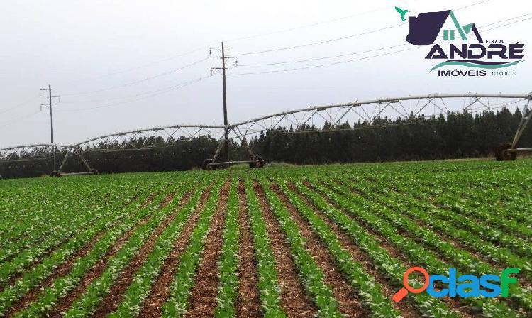Fazenda, 200 alqueires, na região de marília/sp.