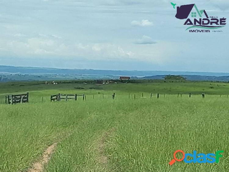 Fazenda, 660 alqueires, na região de marília/sp.