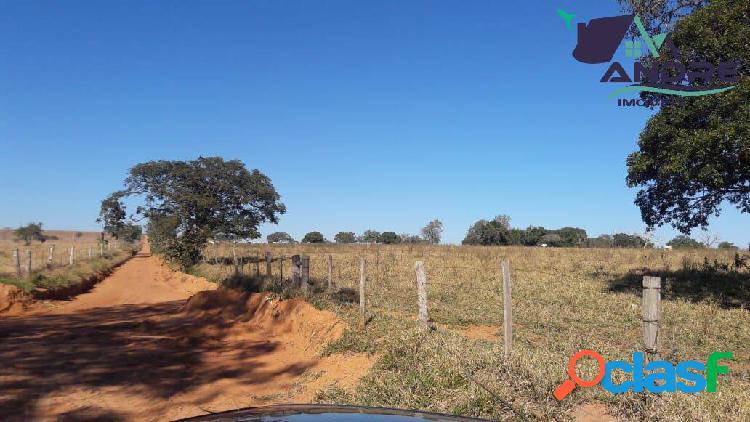 Fazenda, 138,4 alqueire, na região rural de paranapanema/sp.
