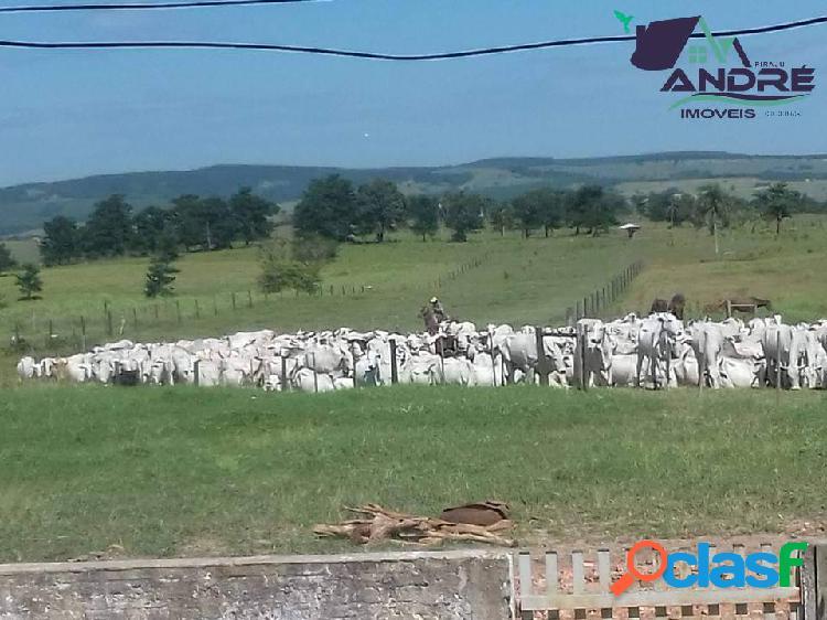 Fazenda, 45 alqueires, na região rural de paranapanema/sp.