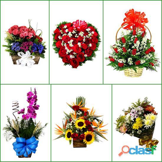 Nova lima mg floricultura entrega flores orquídeas, buquê de rosas, astromélias, gérberas, girassol