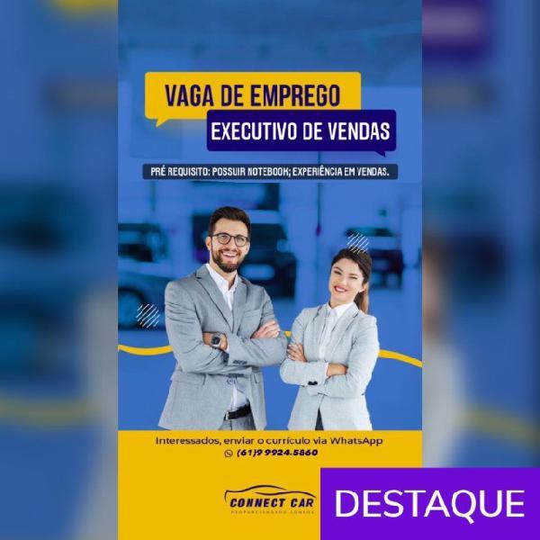 Vendedor interno (autônomo) + vt e vr - executivo de