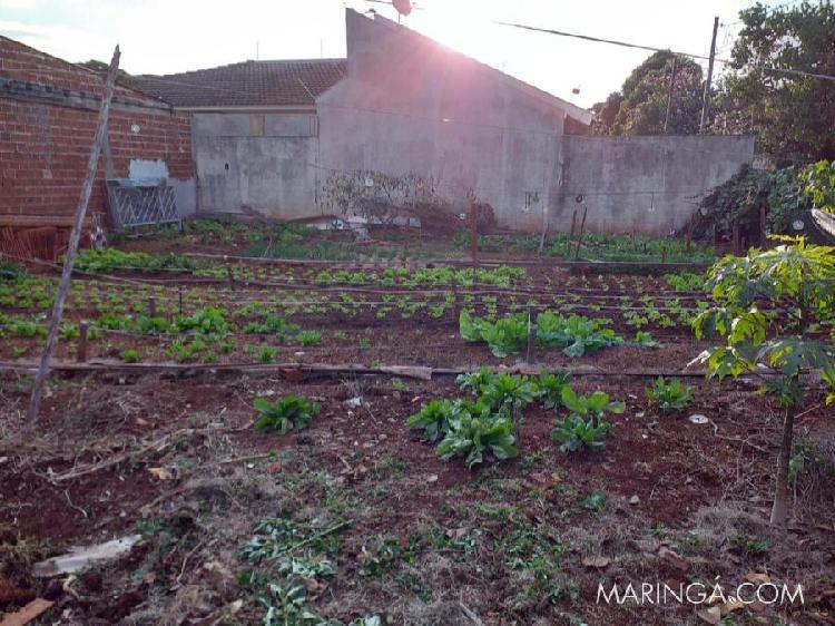 Terreno jardim paulista i maringá-pr. ótima oportunidade!